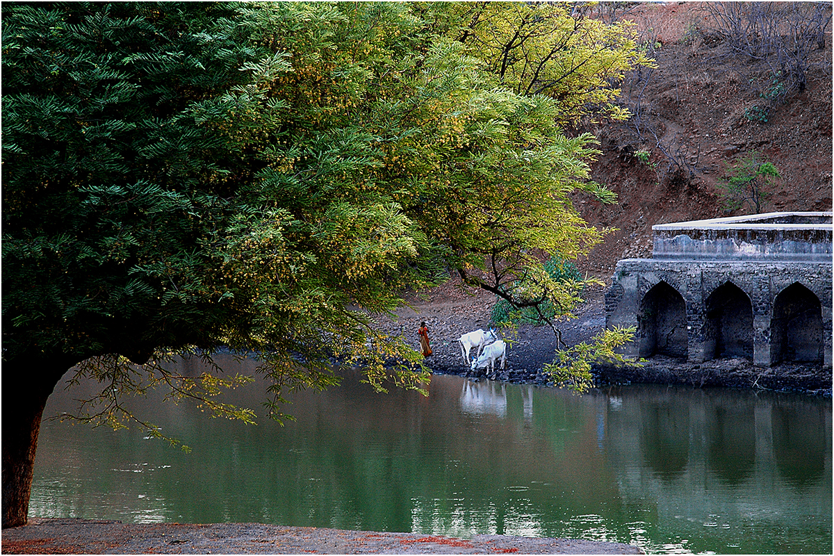 Rewa Pond