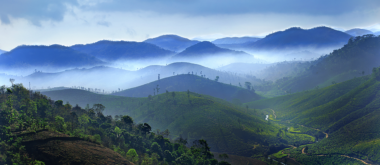 Neelgiri Mountain Range
